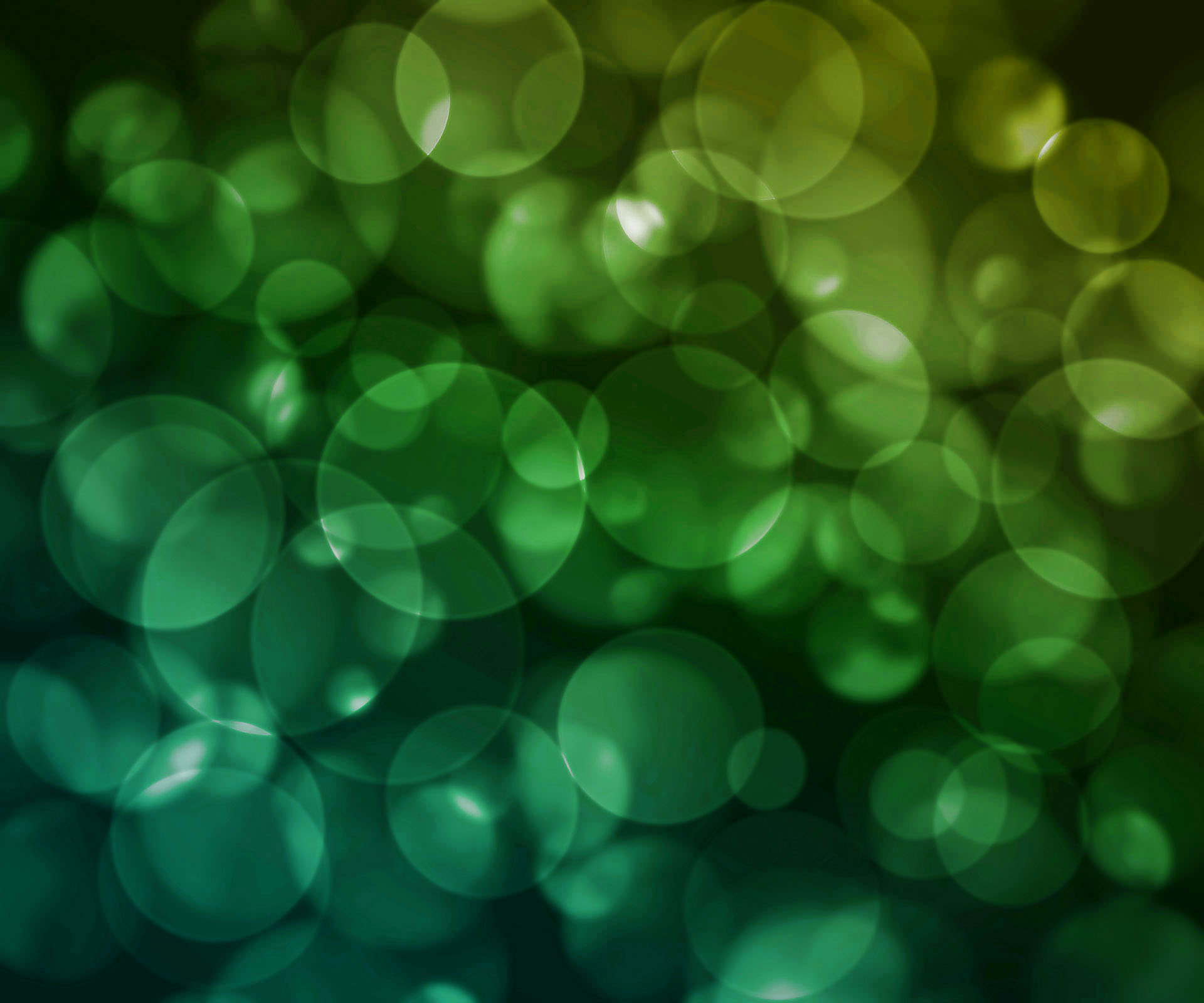 bokeh-back-green-1920